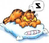 estar dormindo